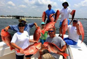 red fish with a group